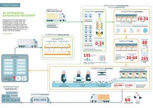 mhp-infographics-02